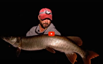 Structure Fishing Musky