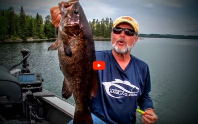 Topwater Smallmouth Bass