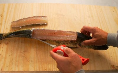 The BEST Way to Fillet a Pike