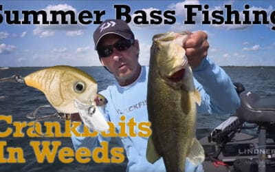 Summer Bass Fishing Crankbaits in Weeds